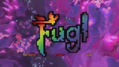 Fugl Crash Compilation