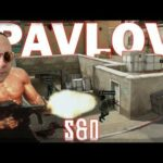 The Way Pavlov S&D Makes you Feel